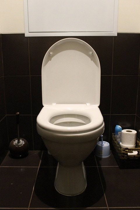 Cuvette WC : choix et pose - Distriartisan