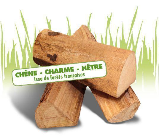 bois buche woodstock