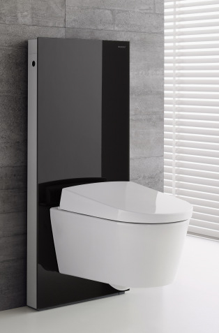panneau wc monolith avec pack suspendu aquaclean sela wc lavant geberit aquaclean wc. Black Bedroom Furniture Sets. Home Design Ideas