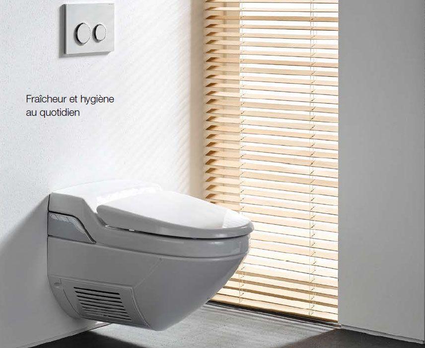 geberit aquaclean distriartisan. Black Bedroom Furniture Sets. Home Design Ideas